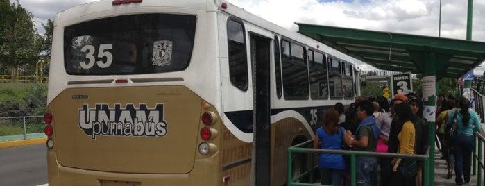Pumabus Metro CU is one of Transporte.