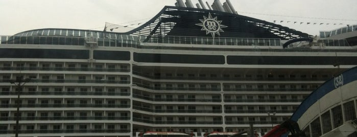 MSC Fantasia is one of Locais curtidos por Rosiris.