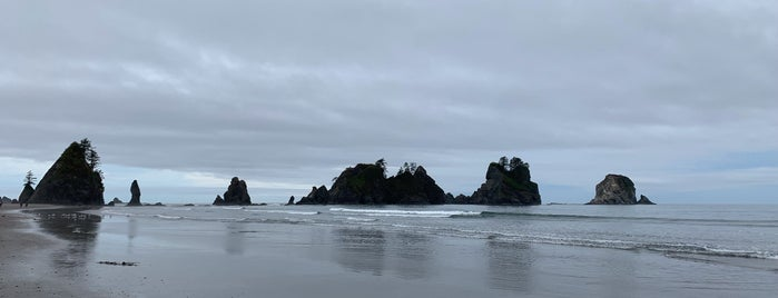 Shi Shi Beach is one of Olympic Peninsula Washington.