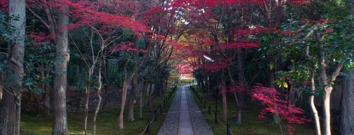 鹿王院 is one of Arashiya temp.