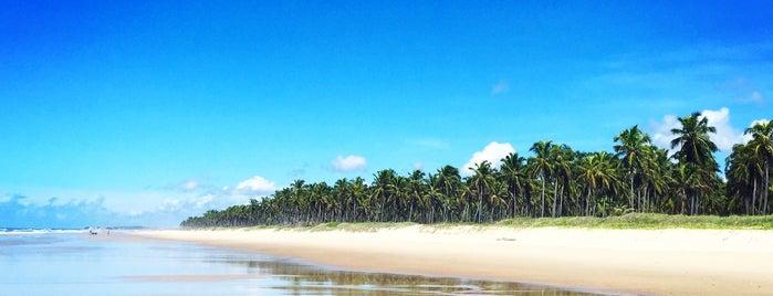 Praia do Francês is one of Lugares favoritos de Katiussia.