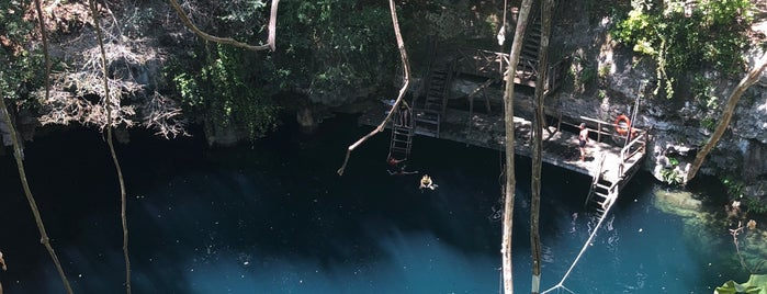 Cenote Yokdzonot is one of Crazy Places.