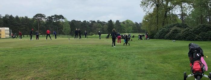 Hilversumsche Golfclub is one of สถานที่ที่ Petri ถูกใจ.