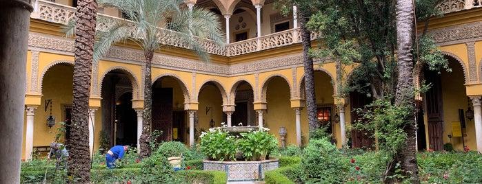 Palacio de las Dueñas is one of sevilla.