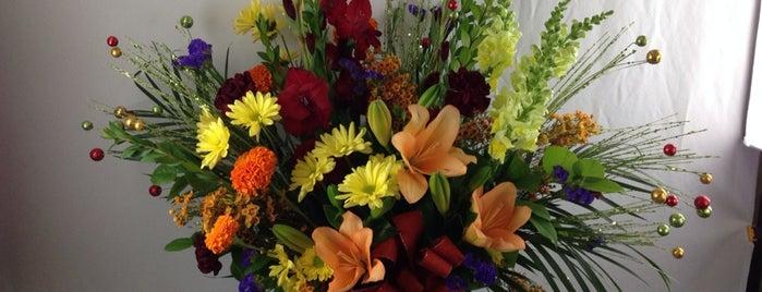 Ed Moore Florist & Greenhouse is one of Tempat yang Disukai Lydia.