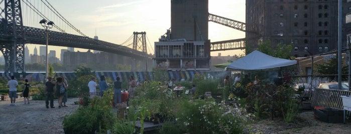 North Brooklyn Farms is one of new york - brooklyn.