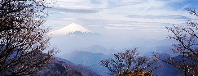 Kanagawa Prefecture is one of Japan 🇯🇵.