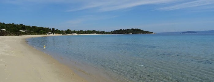 Koursaros Beach is one of Halkidiki.