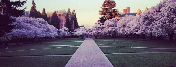 UW Quad is one of Locais curtidos por Larissa.