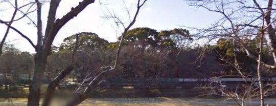 岡山4sqお花見会場4/5 is one of ぎゅ↪︎ん 🐾'ın Kaydettiği Mekanlar.