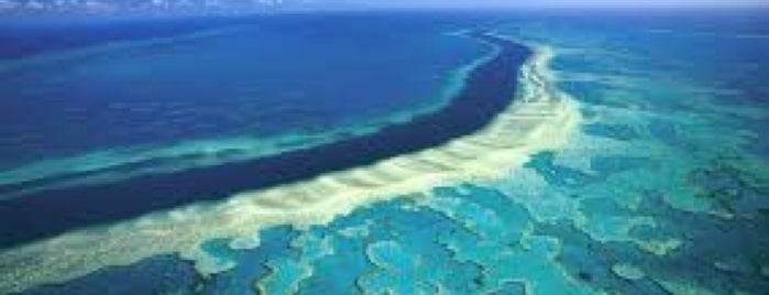 Great Barrier Reef is one of Before the Earth swallows me....