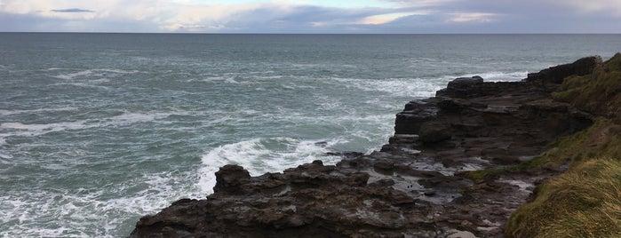 Curio Bay is one of Nuova Zelanda.