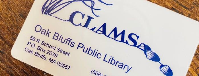 Oak Bluffs Public Library is one of MA.