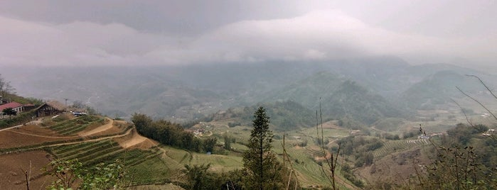 Sapa Rice Fields is one of vietnam.