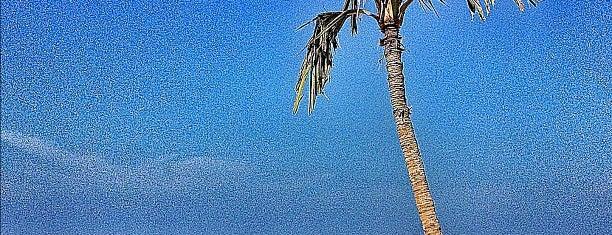 Jumeirah Beach Park is one of Must Visit Places in Dubai  ( Uni Arab Emirates ).