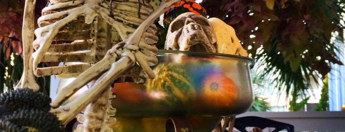ZOMBIE Escape Hatch™ is one of Midgets, Zombies & Aliens.
