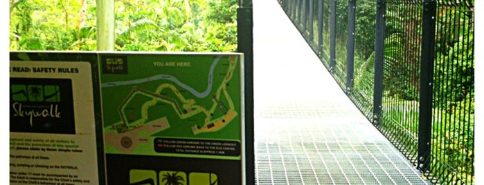 Tamborine Rainforest Skywalk is one of Aussie Trip.