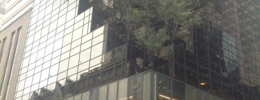 Trump Tower is one of New York City Tourists' Hits.
