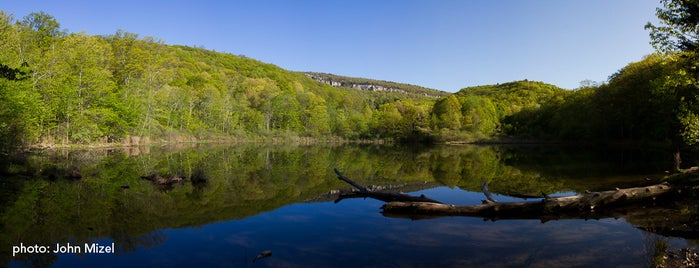 Mohonk Preserve is one of A Locavore's Guide to the Hudson Valley.