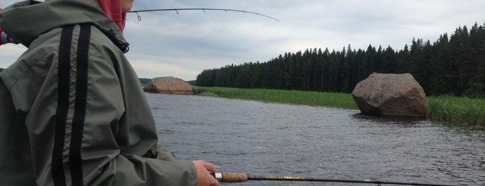Булатное is one of สถานที่ที่ Oleg ถูกใจ.
