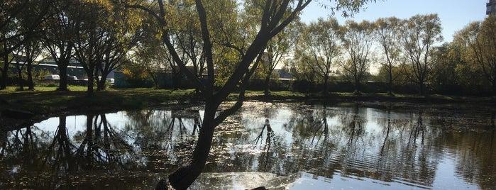 Сквер на Малой Карпатской is one of Lugares favoritos de Leila.