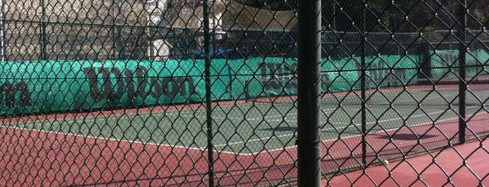 Vakıf Tenis Kulübü is one of Locais curtidos por Senem.