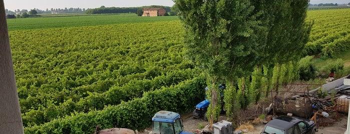 levignedelladuchessa country resort is one of Garfagana Italien.