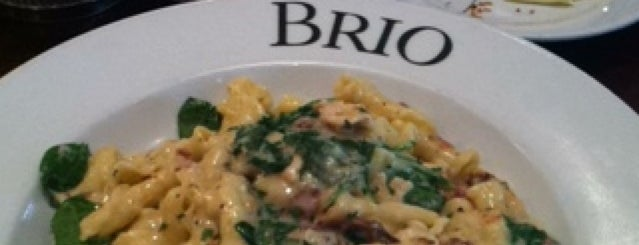 Brio Tuscan Grille is one of St. Louis, MO.