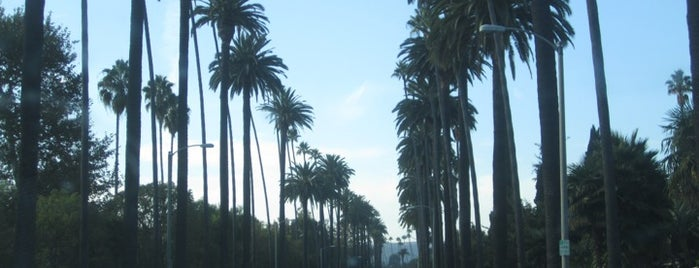 City of Beverly Hills is one of California Favorites.