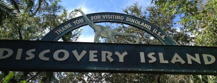 Discovery Island Trails is one of Walt Disney World.