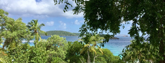 Caneel Bay Resort is one of CBS Sunday Morning 4.