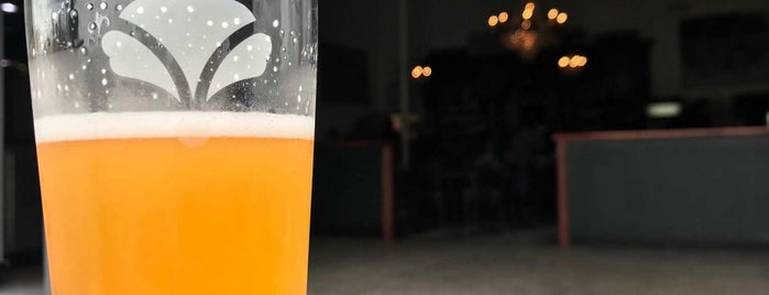 Bearded Iris Brewing is one of Louisville.