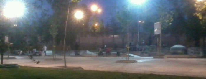 Skatepark Parque O'Higgins is one of Locaciones.