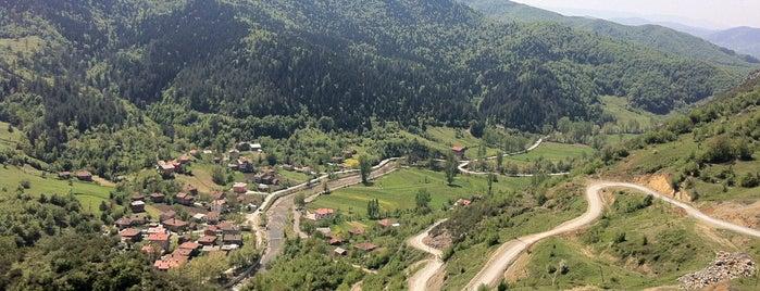 Drahna is one of Ulus İlçesi Köyleri.