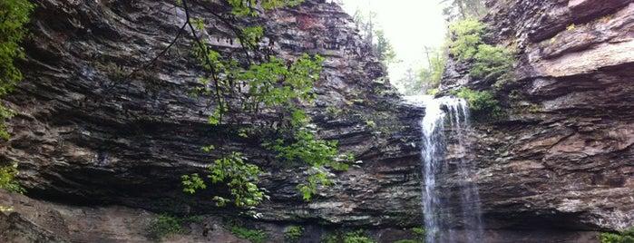 Cedar Falls Trail is one of Tempat yang Disukai Matt.