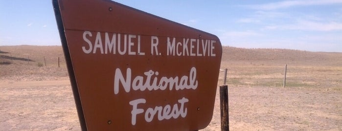 Samuel R. McKelvie National Forest is one of National Recreation Areas.