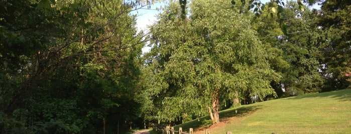 Rocky Branch Greenway is one of Raleigh Favorites.