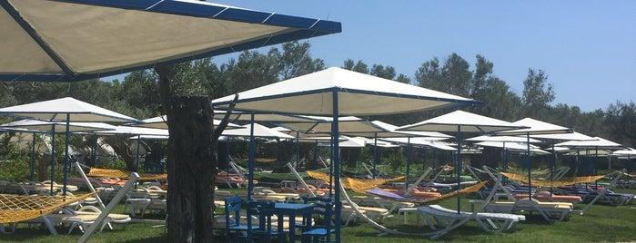 Assos Sahil Çiçekli Bahçe Beach Garden is one of Tempat yang Disukai Burcu.