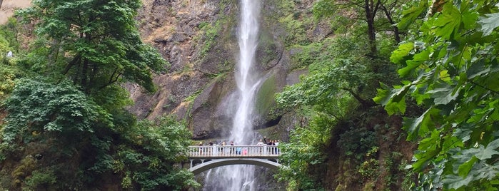 Multnomah Falls is one of Oregon - The Beaver State (2/2).