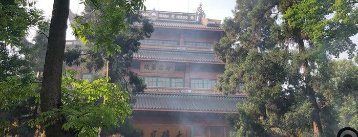 Lieux qui ont plu à Jingyuan