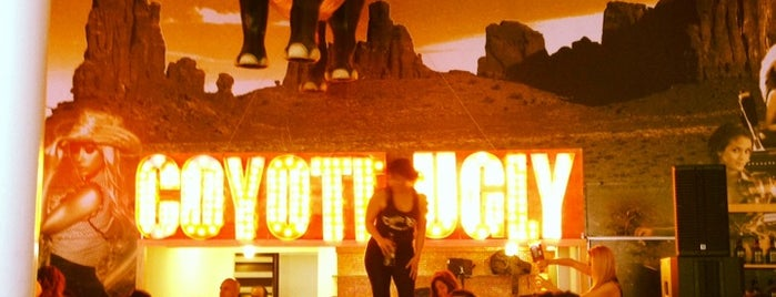 Coyote Ugly Mexico is one of MXDF.