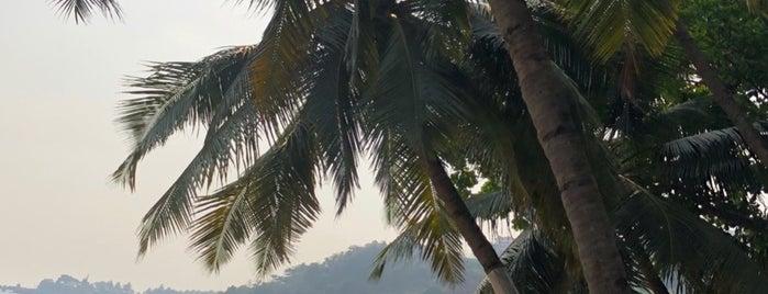 Vaiguinim Beach is one of Tempat yang Disukai Vikram.