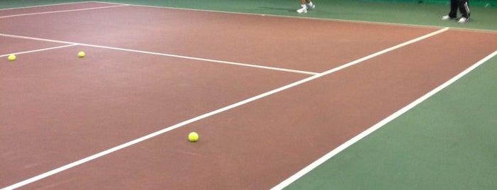 Теннисный клуб «Династия» is one of Теннис.