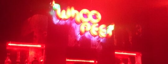 Whoopees Club is one of Guanajuato.