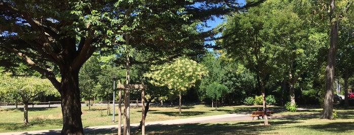 Parc Charruyer is one of La Rochelle.