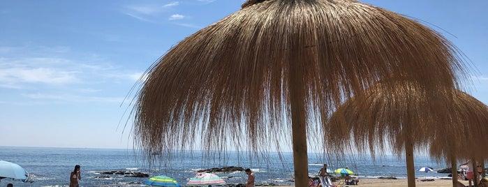 Florida Beach Mijas is one of Restaurantes Málaga 2.