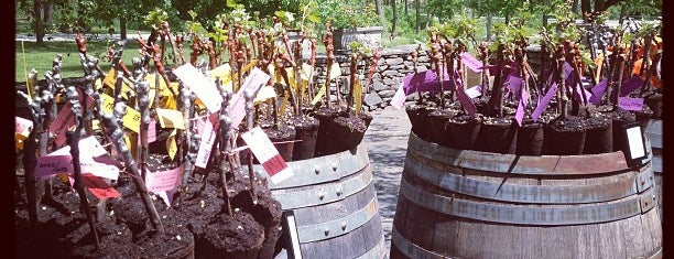 Herman J Wiemer Vineyard is one of Finger Lakes Wine Trail & Some.