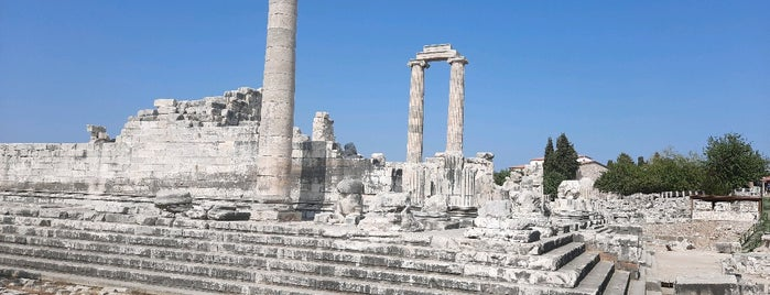 Didyma Antik Kenti is one of ANCIENT LOCATIONS IN TURKEY.