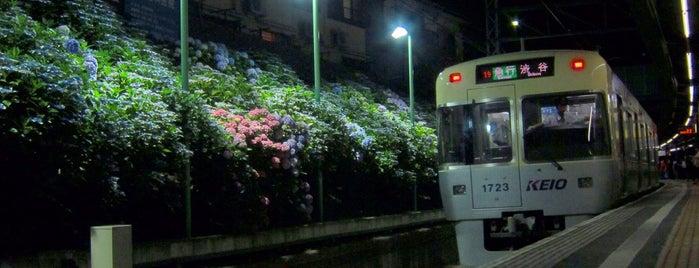 東松原駅 (IN07) is one of 撮り鉄スポット.