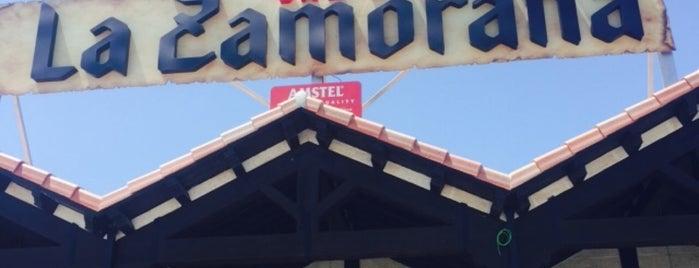 Restaurante La Zamorana is one of ESPAÑA ★ Menú del día máx. 12€ ★.